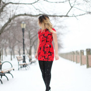 red parker new york poinsetta red dress snow