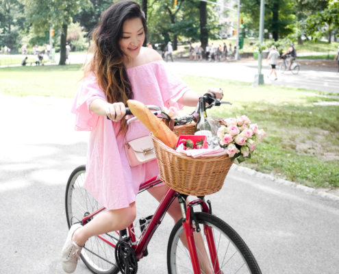 NYC Central Park Bike Picnic