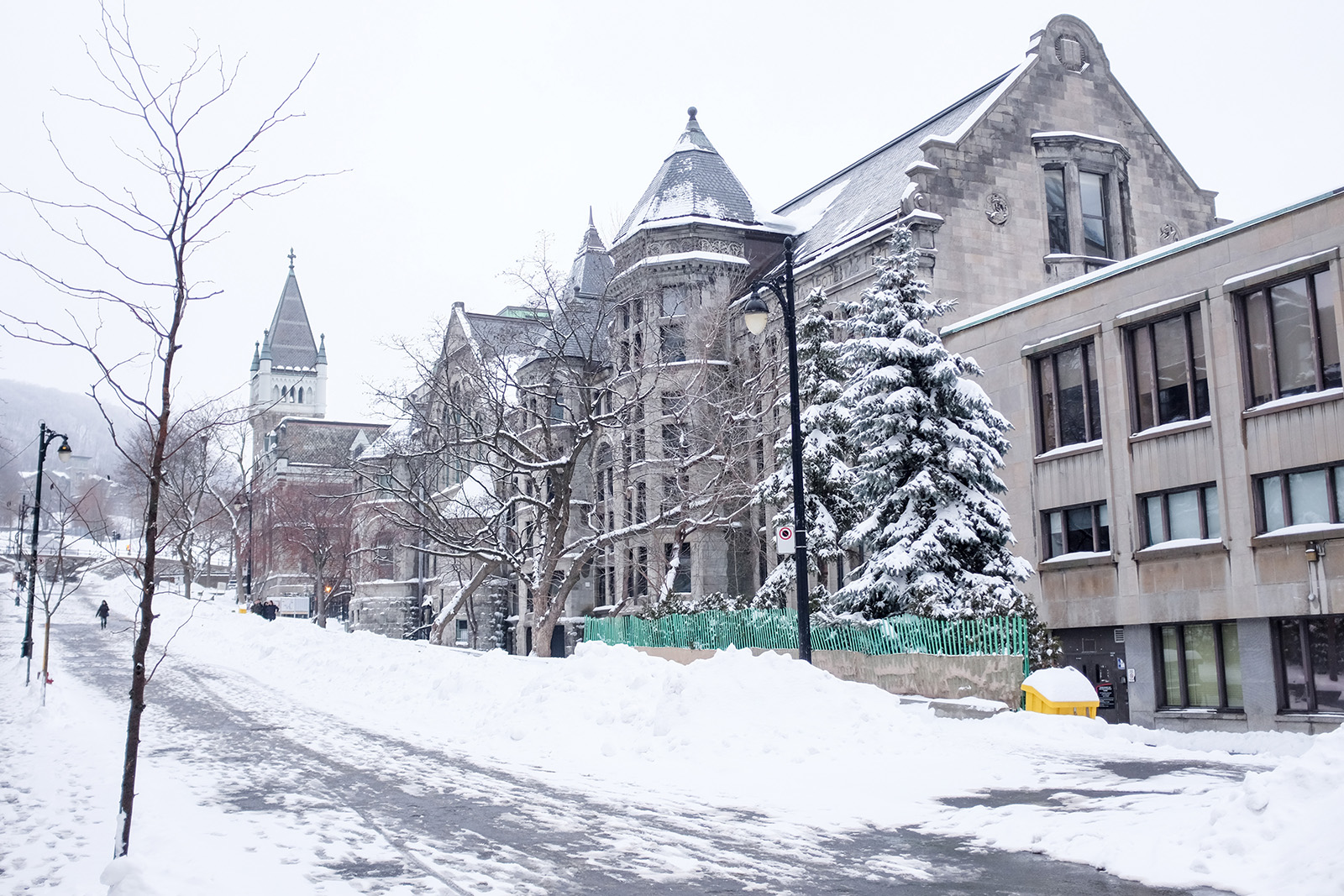 McGill University, Montreal