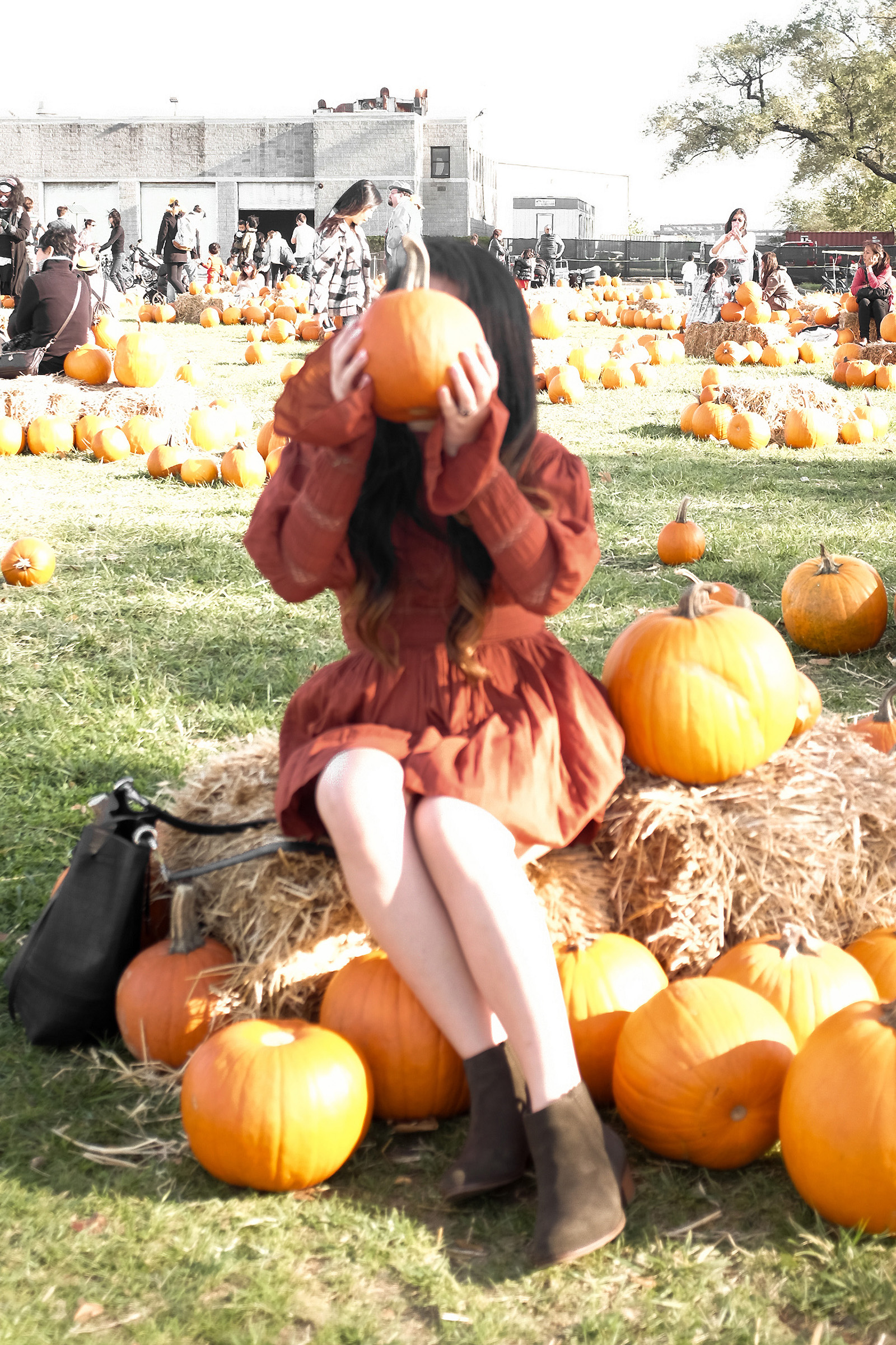 Pumpkin Picking Fall Dress